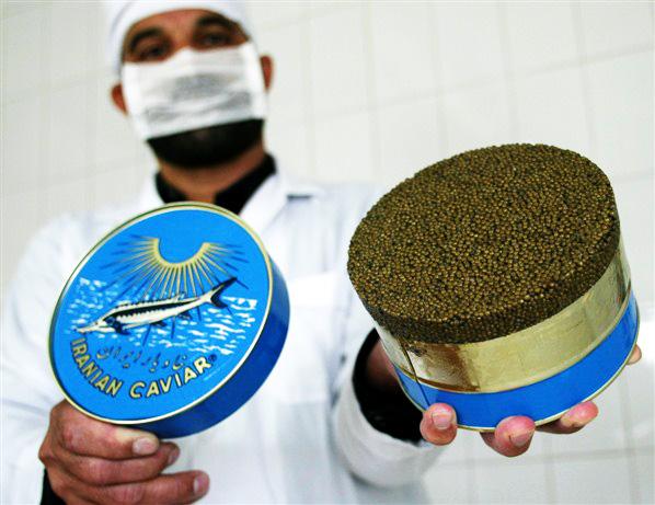 Цена черной икры оптом за 1 килограмм (кг)