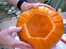 halloween jack light 03 - Как сделать костюм таракана своими руками