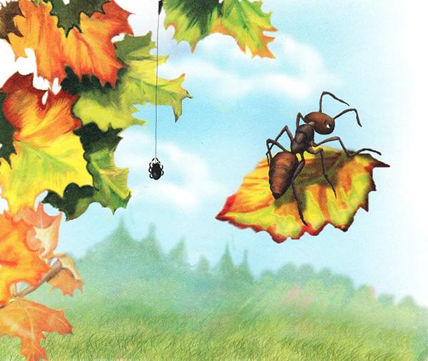 Картинки осенних листьев для детей 37 фото