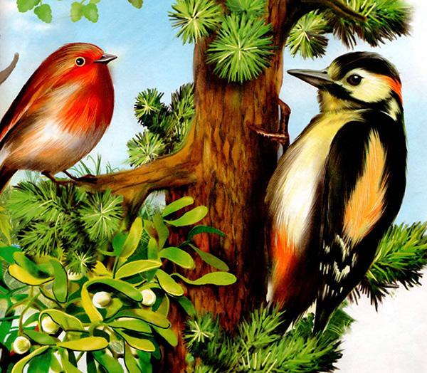 Картинка ягоды лесные