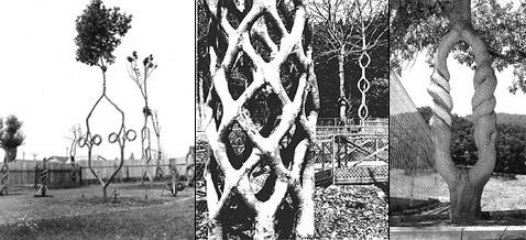 """Кадры первых лет """"Древесного цирка"""" из семейного архива Эрландсонов  (фото с сайта arborsmith.com)."""