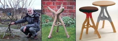 """Однажды арборскульптора доктора Криса Кэттла (Chris Cattle) студенты спросили: """"Как может творческая энергия содержаться в мебели?"""". А ответил он им так... (фото с сайтов arborsmith.com и growingvillage.com)."""