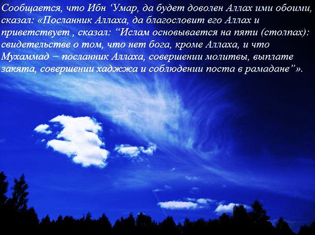 Елена Сафонова: личная жизнь / Личная-Жизнь. ру