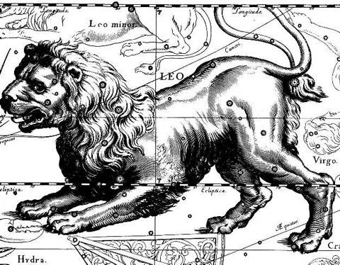 лев созвездие гороскоп